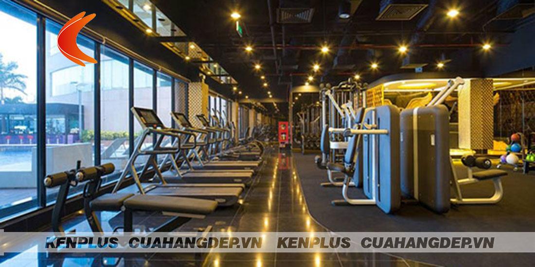 Tư vấn thiết kế phòng gym hiện đại mà tiết kiệm chi phí cho người mới